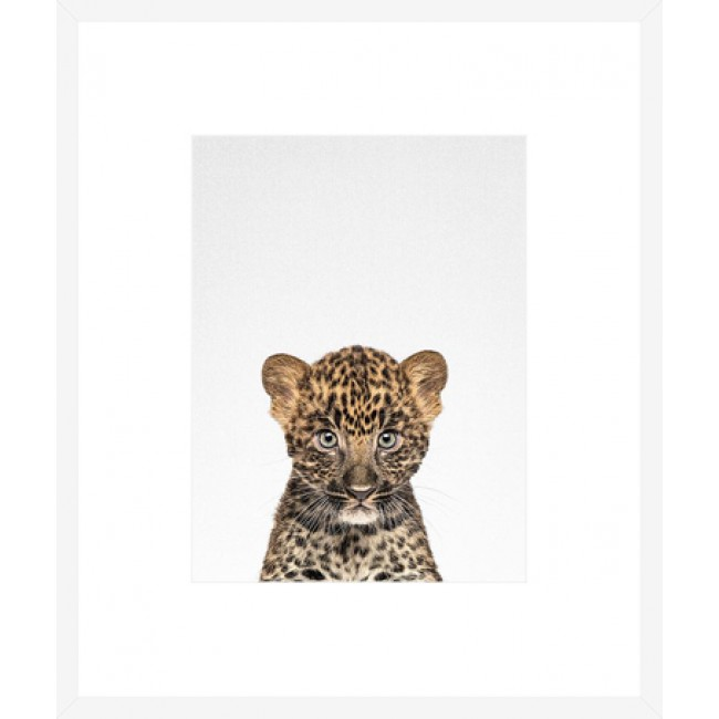 Leopard Cub Boxed Frame